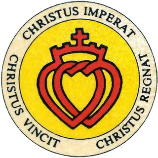 Image result for sspx logo rumor
