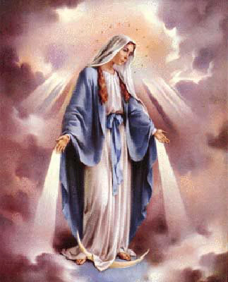 Hail mary, conceived without sin, pray for us now and in the hour of our death.