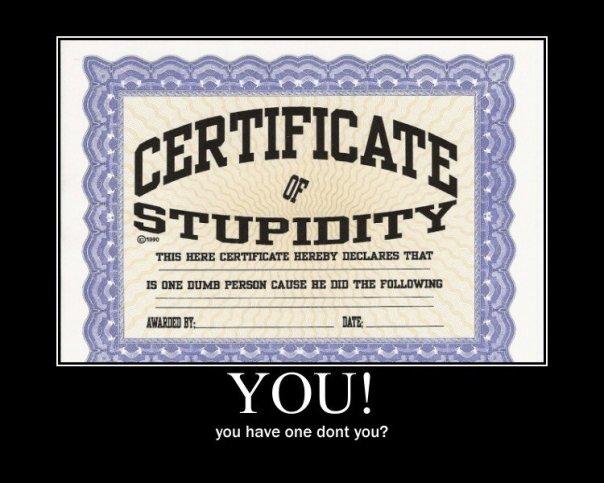 stupidity_cc17d1_1807268
