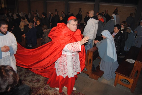 """Cardinal Burke with """"cappa magna"""". I wonder what Francis would think of it?"""