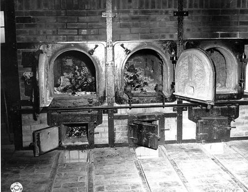 Ovens at Auschwitz' extermination camp. Clearly an inspiration for UK hospitals.