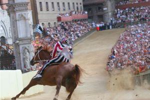 Look! The Poor horse is in d... dan... danger!!