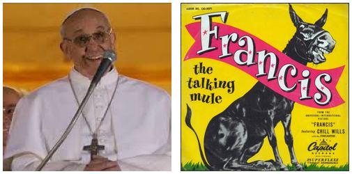 PopeFrancis_TalkingMule