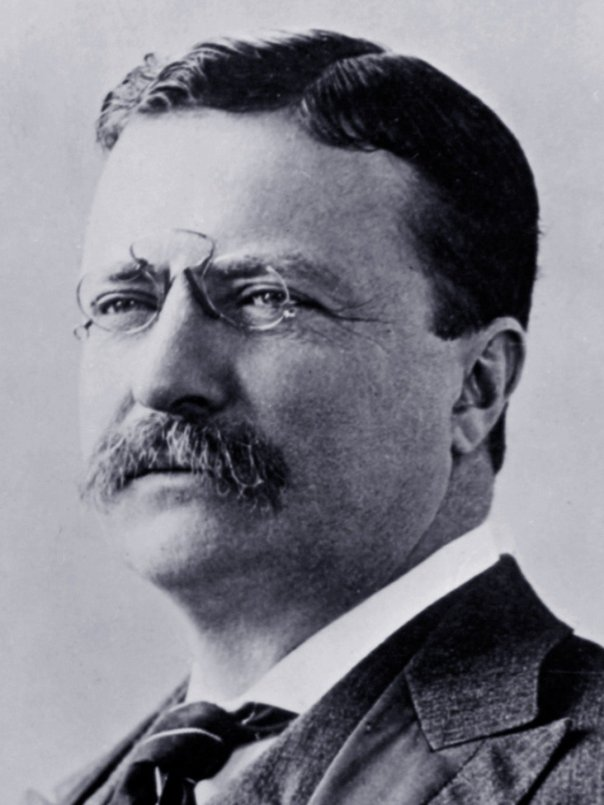 Theodore Roosevelt / Photo / 1903